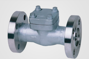 Check / Non-return Valve